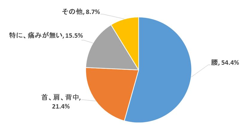 商品購入前事前アンケート.JPG
